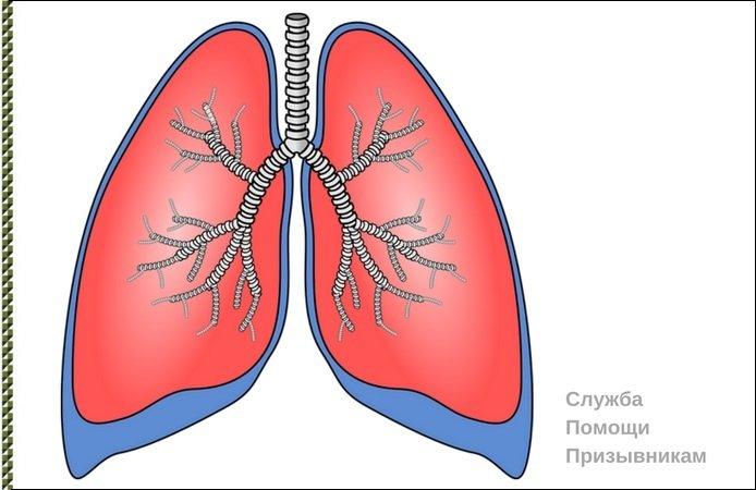 бронхиальная астма армия